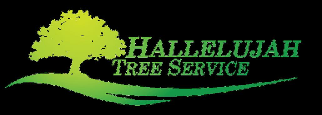 Tree Service Pasadena CA