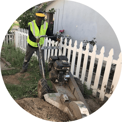 Tree Removal Pasadena CA